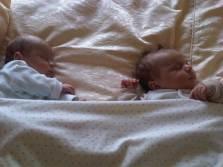 6 weeks old pics 108